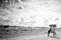 Transporting Charcoal | Lilongwe | Malawi